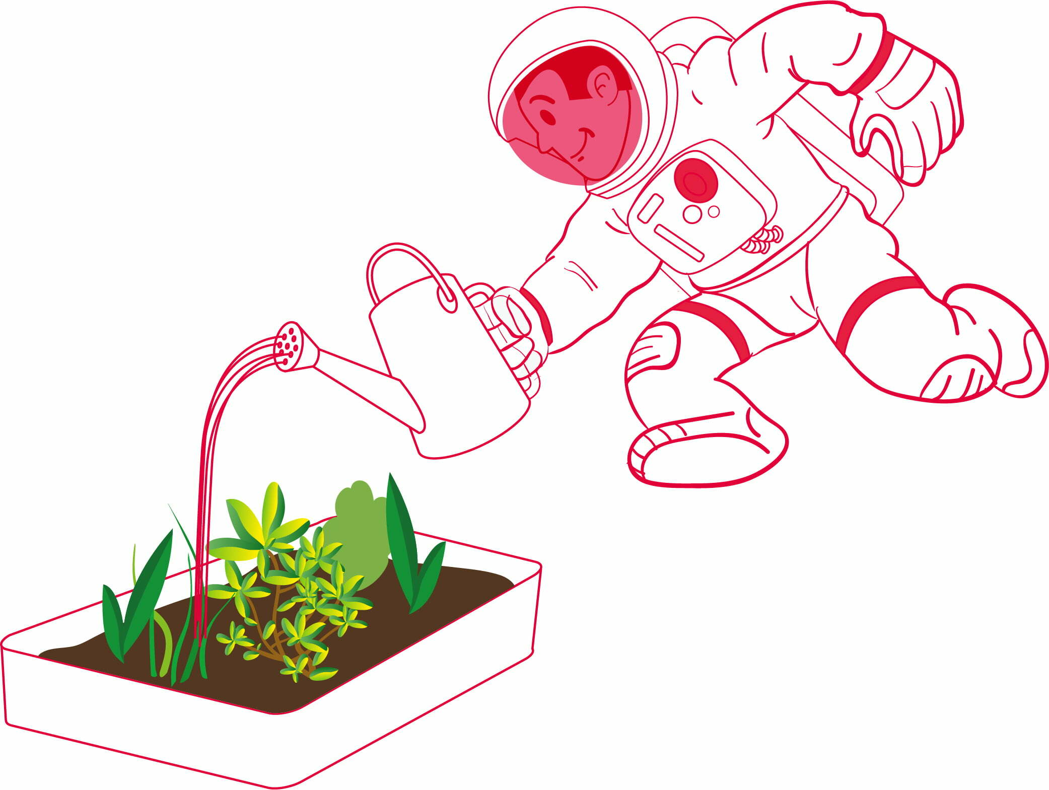 Astrofarmer – Learning about conditions for plant growth